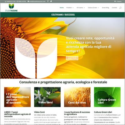 Logo Design - Biancolapis. Design per la Comunicazione
